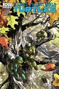 TMNT-29_Cover-A-674x1024